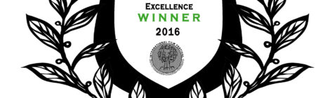 SALT receives Outstanding Excellence Award